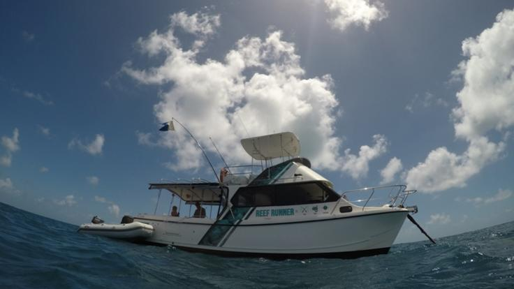 Fishing & Snorkelling Private Charter tour from Cairns