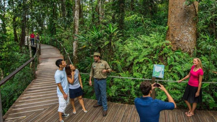 Red Peak boardwalk SKYRAIL Kuranda tour