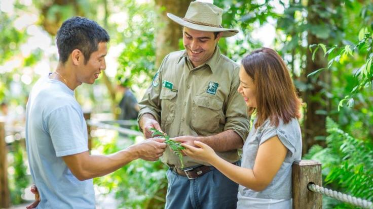 Join our Guided tour with onsite Rangers at Skyrail Interpretation Centres