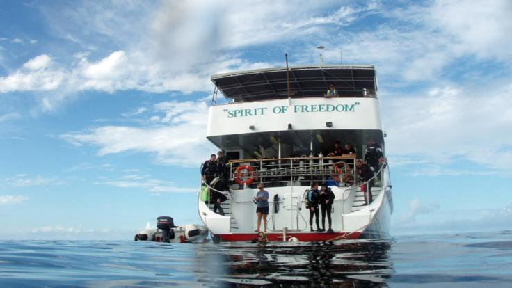 Luxury 5 star diving the Great Barrier Reef