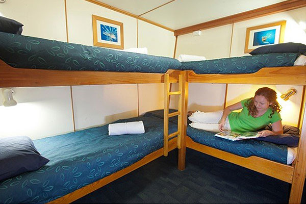 Quad bunk accommodation on liveaboard dive boat
