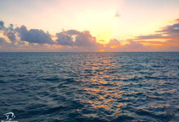 Sleep On The Great Barreir Reef | Wake Up To This