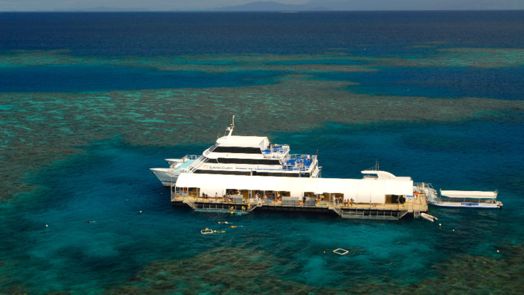 Cruise, snorkel and dive on the Great Barrier Reef