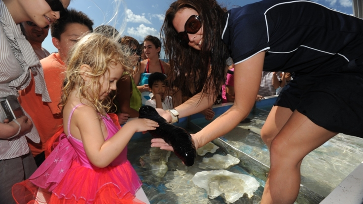 Great Barrier Reef tours perfect for all family age groups