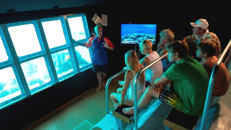 Underwater Observatory on the Great Barrier Reef tour platform