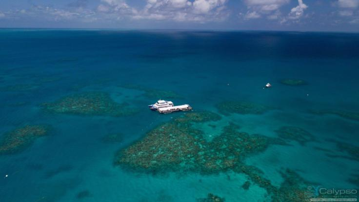 Aerial View of Arlington Reef Pontoon - Cairns Great Barrier Reef Tour