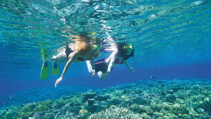 Couple Snorkelling on the Great Barrier Reef - Cairns