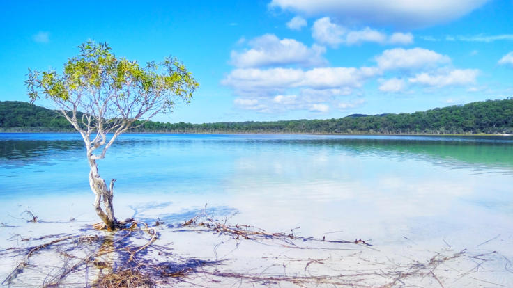Take the chance to get amazing photos of the sites on Fraser Island.