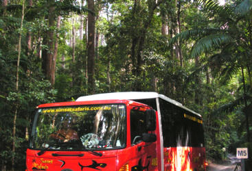 Travel in comfort in your specialised 4WD bus on Fraser Island
