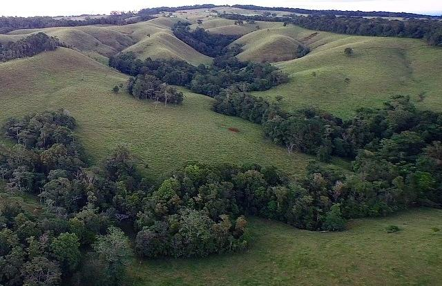 Undulating hills over Atherton Tablelands