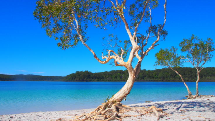 The amazing blue waters of Lake McKenzie, Fraser Island