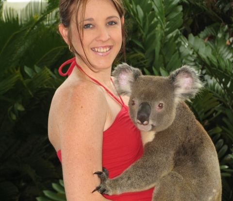 Cuddle a koala and have a photo in Kuranda