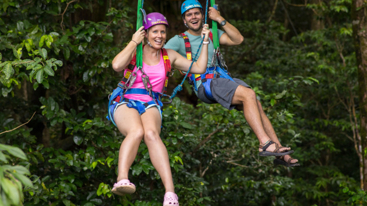 Jungle Surfing is an optional extra on this tour, Daintree Rainforest