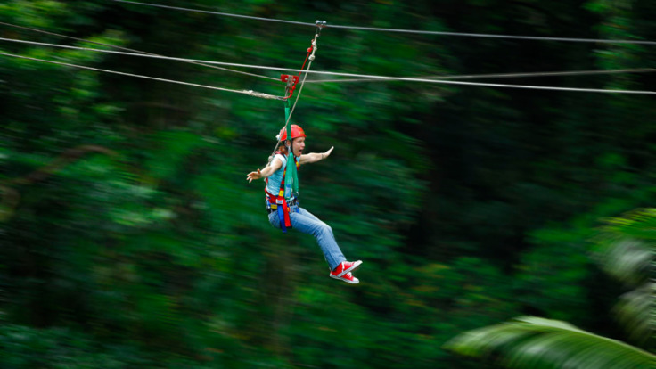Exhilarating ride through the rainforest - Jungle Surfing