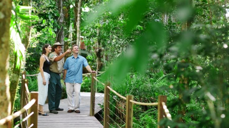 Skyrail Gondola Red Peak Boardwalk - stop and explore the rainforest on the way to Kuranda Village