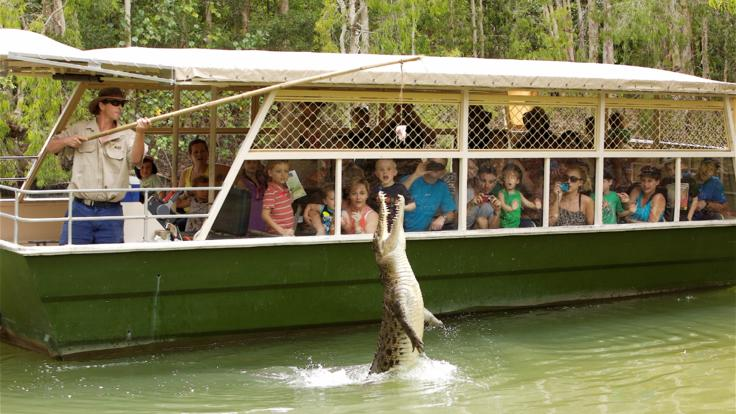 Enjoy the snappy crocodiles on the Billabong cruise