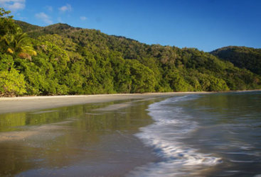 Cape Tribulation coastline