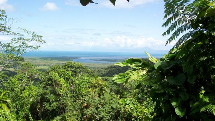 Cape Tribulation Scenic lookouts