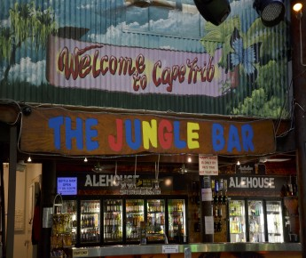 The Jungle Bar