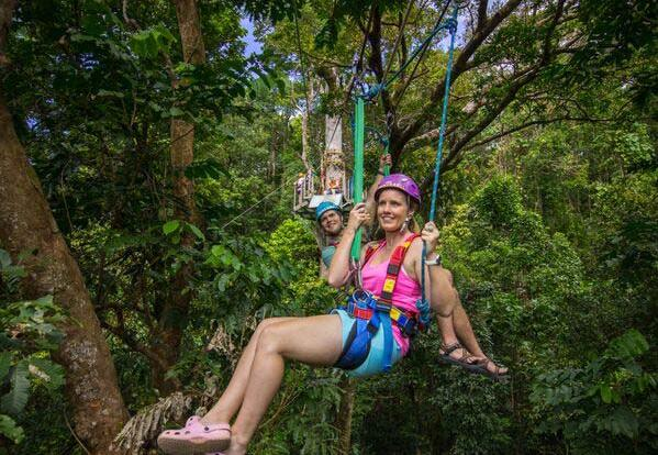 Upgrade to Jungle Surfing in the Daintree Rainforest
