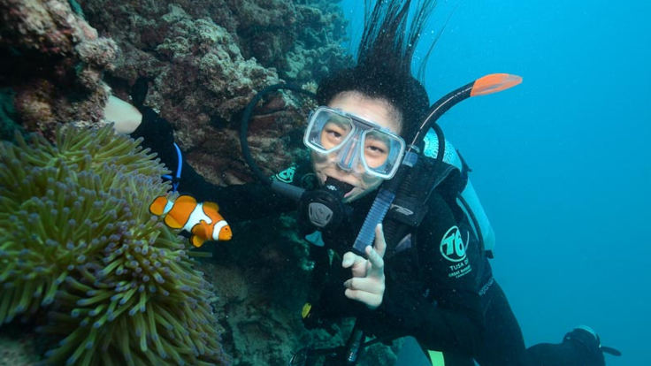 Dive with Clown Fish on the Outer Great Barrier Reef from Cairns