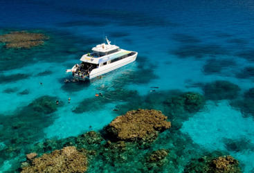 Visit 2 pristine Outer Great Barrier Reef locations on our dive and snorkel tour from Cairns