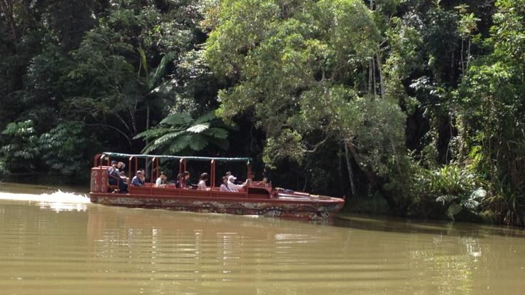World War 11 Army Duck Rainforest Tour Kuranda