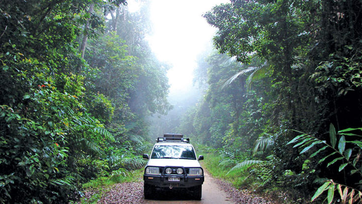 four wheel drive rainforest trail in Cairns