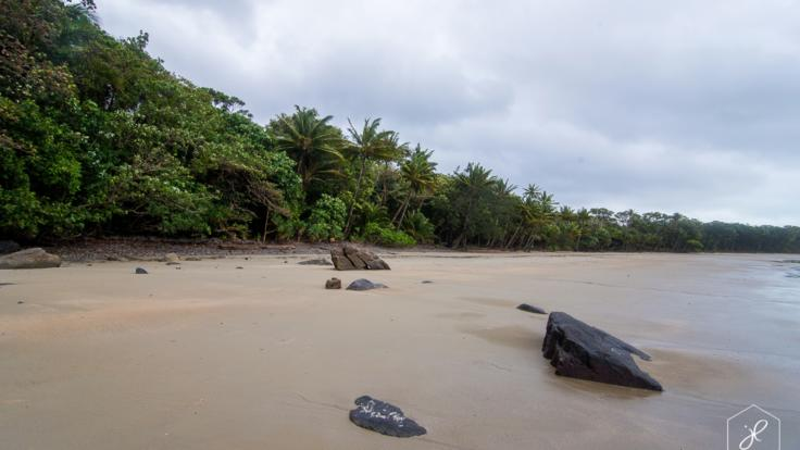 Enjoy stunning views in Cape Tribulation Beach