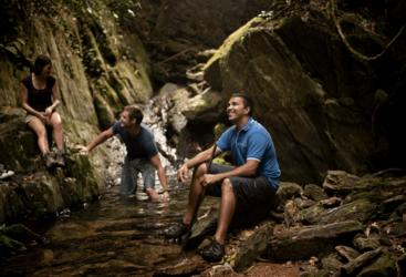 Explore ancient gorges and river beds on your Aboriginal guided tour of the Daintree