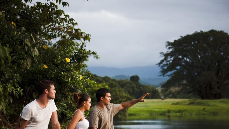 Take a walkabout with your Aboriginal guide in the Daintree Rainforest