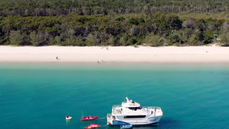 Fraser Island & Hervey Bay Whale Watching Tours