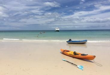 Fraser Island Half Day Beach Cruise | Kayaks, Swimming & Relaxing