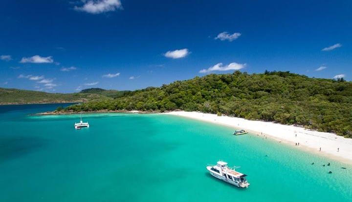Enjoy Whitehaven Beach | Snorkel Tour