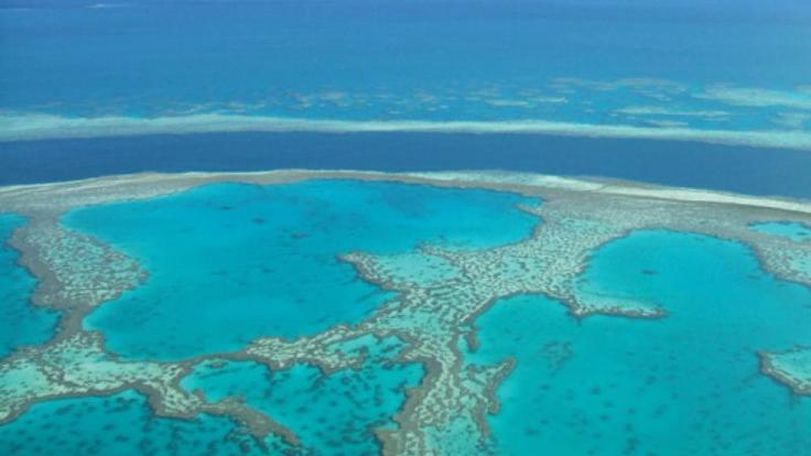 Aerial views of the coral reefs in the Whitsundays