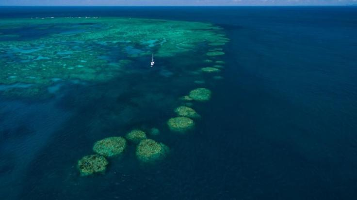 These reefs in the Whitsunday Islands are called Stepping Stones