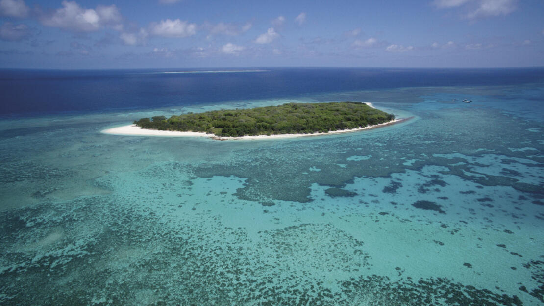 Lady Musgrave Island - No Resort