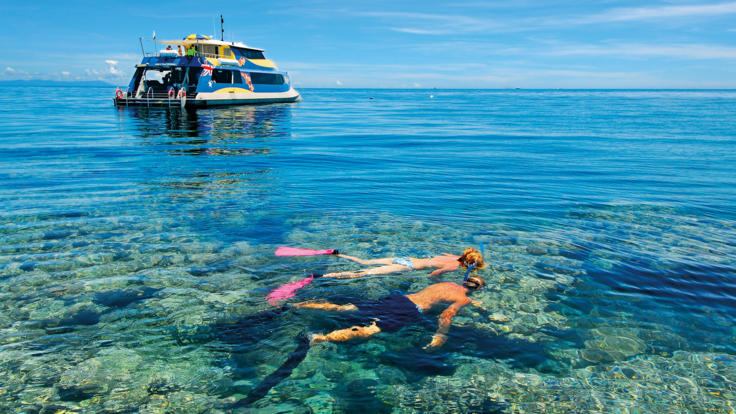 Snorkelling on Opal Reef, Port Douglas