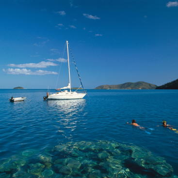 Snorkelling at Stonehaven, Hook Island, Whitsundays