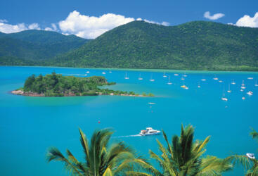 Shute Harbour, Whitsundays