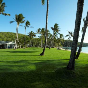 Orpheus Island lodge grounds
