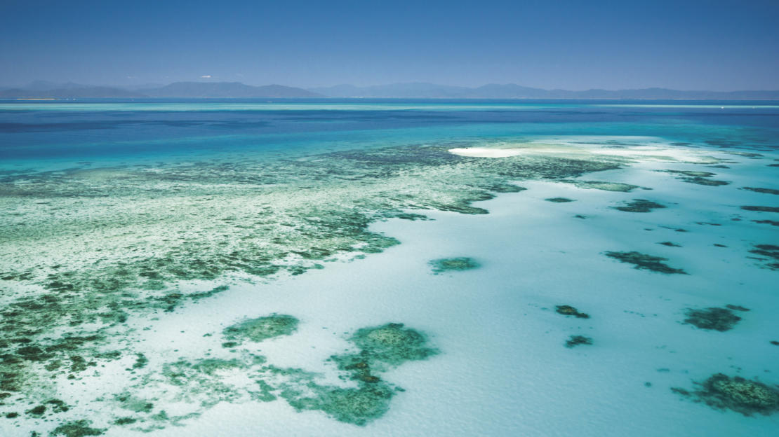 Barrier Reef Australia: Aerial view of a coral reef off Cairns