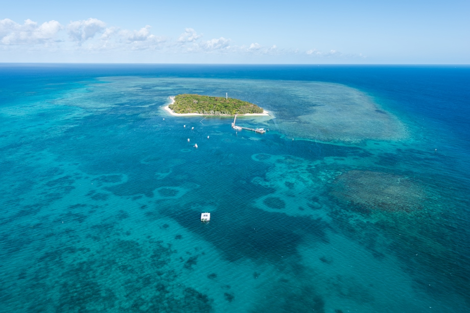 Green Island Resort Accommodation Day Trip Tours For
