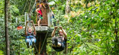 Try Jungle Surfing in the Daintree Rainforest