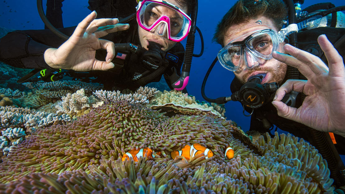 Barrier Reef Australia: Divers showing the okay signal underwater