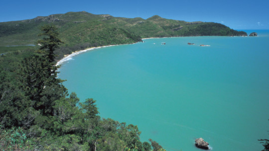 Casuarina Bay, Cape Hillsborough National Park, Mackay Region