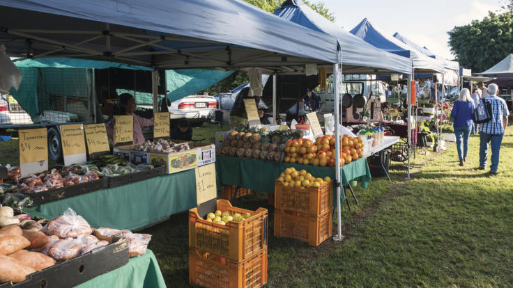 Yungaburra Markets, Atherton Tablelands
